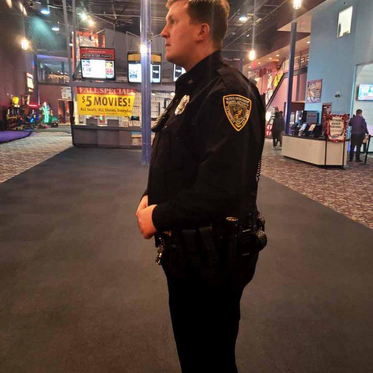 Amusement and Entertainment Venue Security